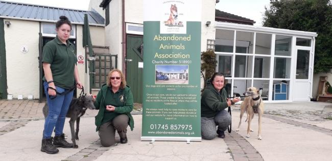 Carys Roberts, manager Carol Roberts and the charity's chair Debbie Gale with two rescue greyhounds that have been at the centre for 14 months. Picture: Kerry Roberts