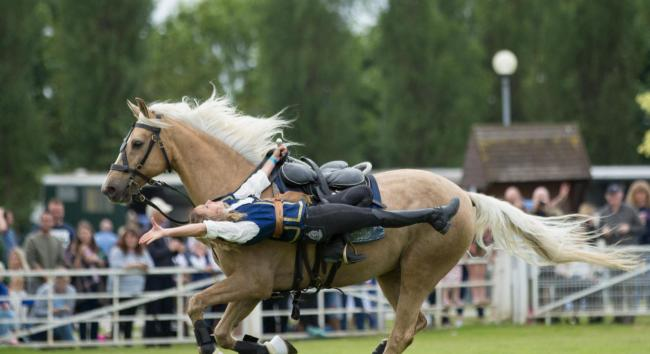 The Atkinson Action Horses will be at the Denbigh and Flint Show. Picture: E J Lazenby Fine Art