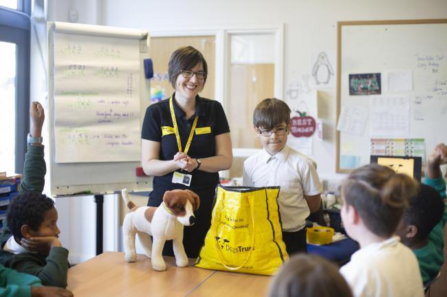 Dogs Trust workshops in action