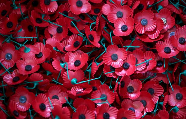 Remembrance honours the fallen