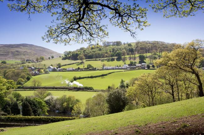 Coed-Y-Glyn Log Cabins at their home base of Glyndyfrdwy in Denbighshire. Picture: Tom Beynon/PA