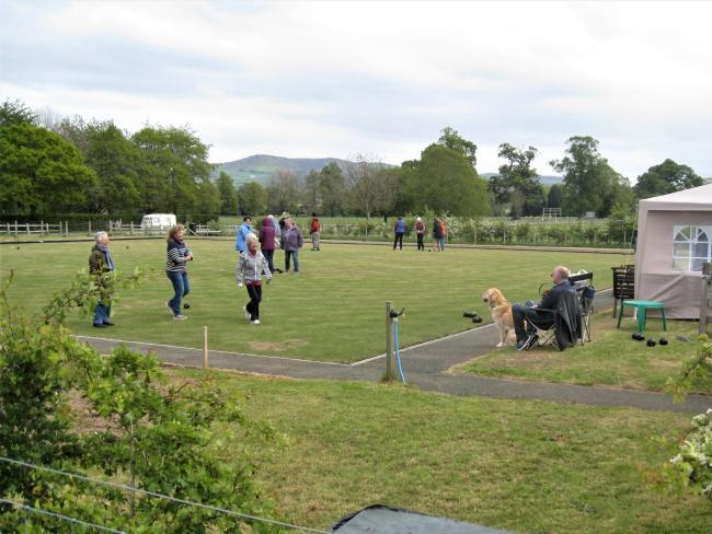 Gorphwysfa Bowls Club organised a very successful open day